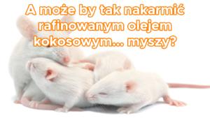 Myszy karmione rafinowanym olejem kokosowym